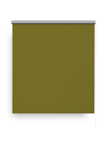 Штора рулонная Blackout Silver 160х175см зеленый - купить в Кингисеппе. ТД «Вимос»